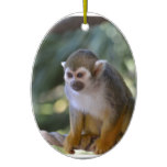 Amazing Squirrel Monkey Ceramic Ornament