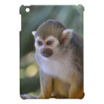 Amazing Squirrel Monkey Cover For The iPad Mini