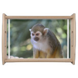 Amazing Squirrel Monkey Serving Tray