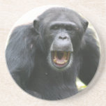 Chatty Chimpanzee Plate Coaster