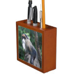 DeBrazza Monkey Pencil/Pen Holder