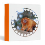 Golden Lion Tamarin Binder