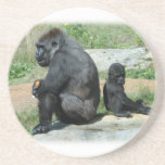Gorilla Time Out  Coaster