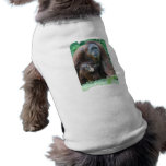 Orangutan Family  Pet Shirt