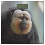 Saki Monkey Bathroom Scale