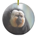 Saki Monkey Ceramic Ornament