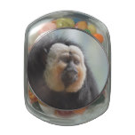 Saki Monkey Jelly Belly Candy Jar