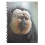 Saki Monkey Notebook